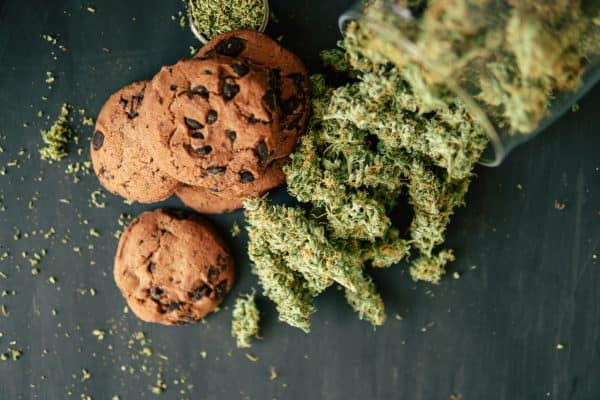 Casino Cookies CBD Hemp Flower Strain