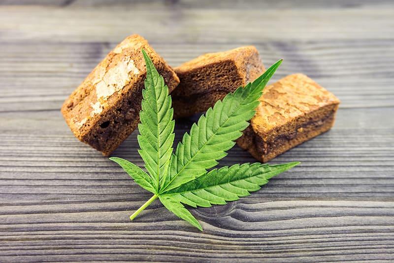 Pick a Strain: Understanding Cannabis Strain Types - sativa indica hybrid