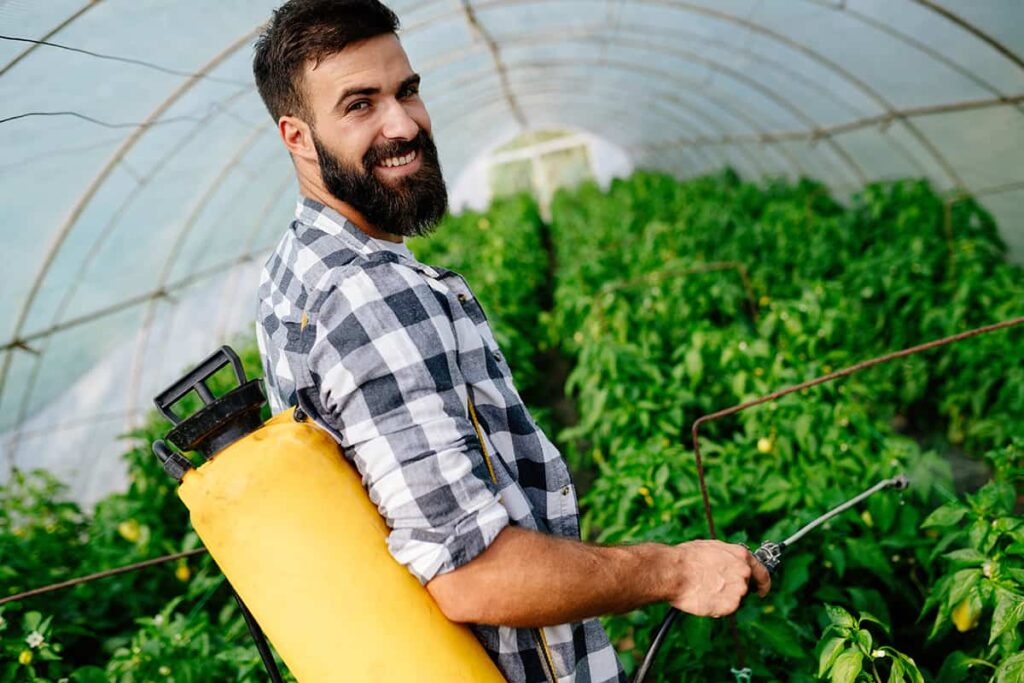 cultivating cannabis